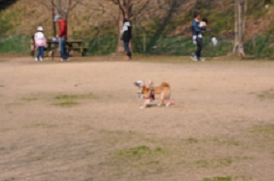 blog11522.jpg