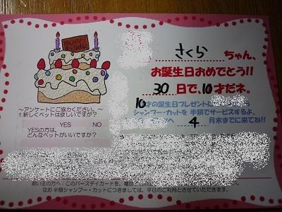 blog11620.jpg