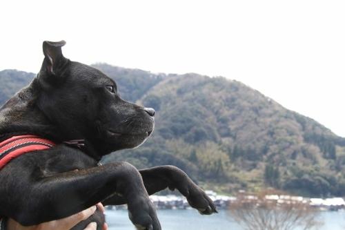京丹後の旅7