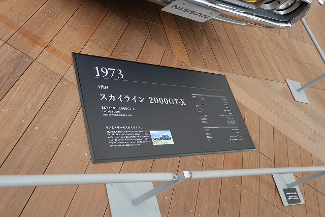 P1010434.jpg