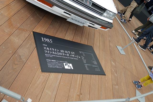 P1010440.jpg