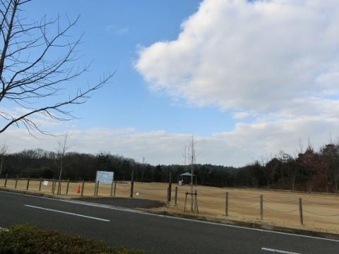 散歩 018 (480x360)