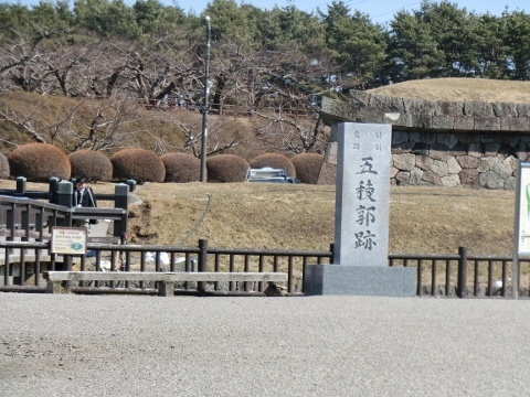 函館 047 (480x360)
