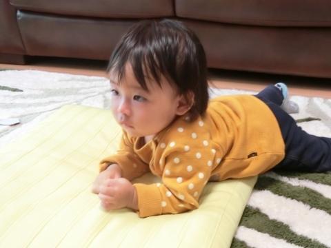 むぎちゃん 012 (480x360)