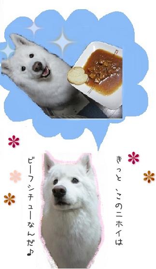 mon4.jpg