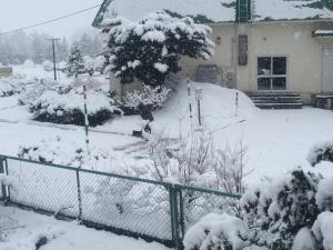その中で除雪