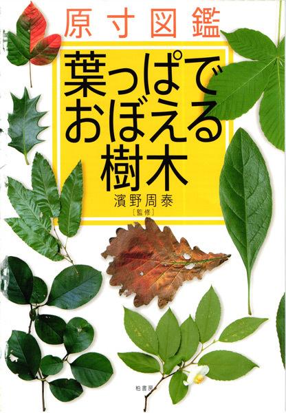 原寸図鑑 葉っぱで覚える樹木PDF-1a