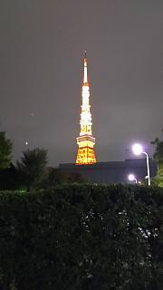 20161110東京タワー(その4)