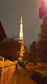 20161110東京タワー(その5)