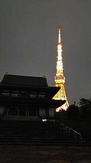 20161110東京タワー(その8)