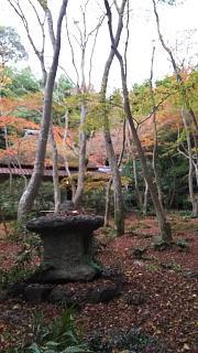 20161123祇王寺(その6)