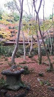 20161123祇王寺(その7)
