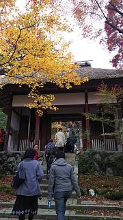 2016+1123常寂光寺(その3)