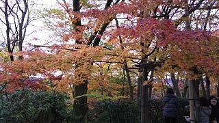 2016+1123常寂光寺(その24)
