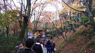 2016+1123常寂光寺(その29)