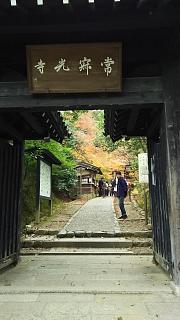 2016+1123常寂光寺(その42)