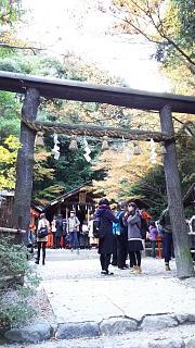 2016+1123野宮神社(その1)