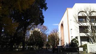 20161210戸山公園(その10)
