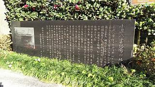 20161210大久保→歌舞伎町(その2)
