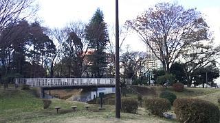20161218歌舞伎町→高田馬場(その5)