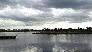 20161223平和島公園(その2)