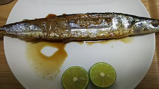 20161001秋刀魚