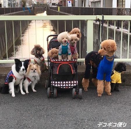 20170310 チーム服4