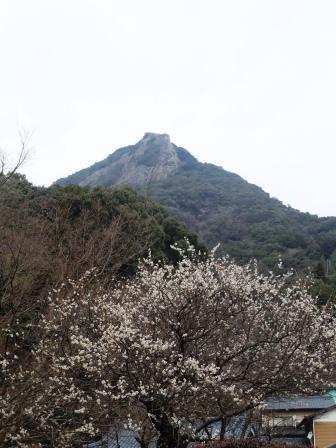 英山1(2017-02-26).