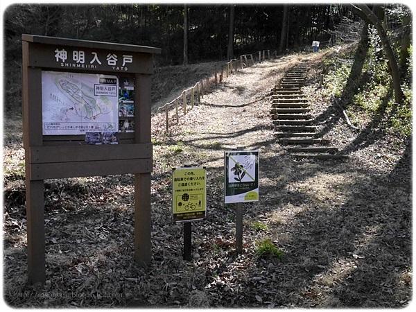 sayomaru19-476.jpg