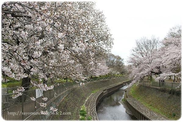 sayomaru20-133.jpg