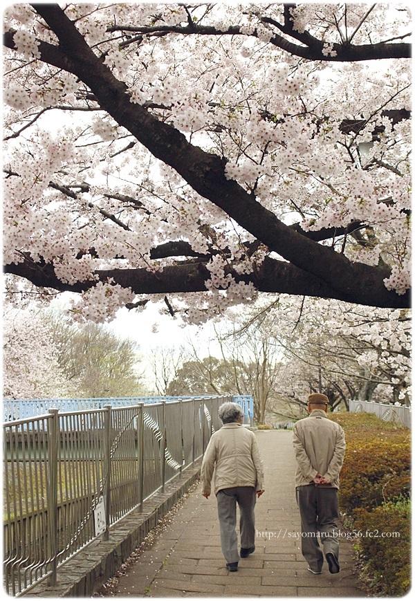 sayomaru20-62.jpg
