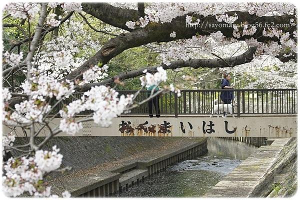 sayomaru20-70.jpg