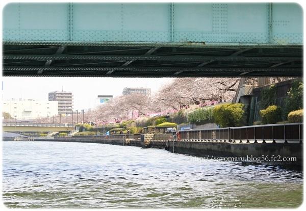 sayomaru20-72.jpg