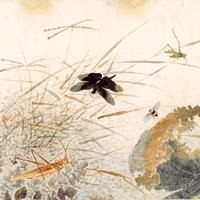 中国の花鳥画Qian_Xuan_Wikimedia