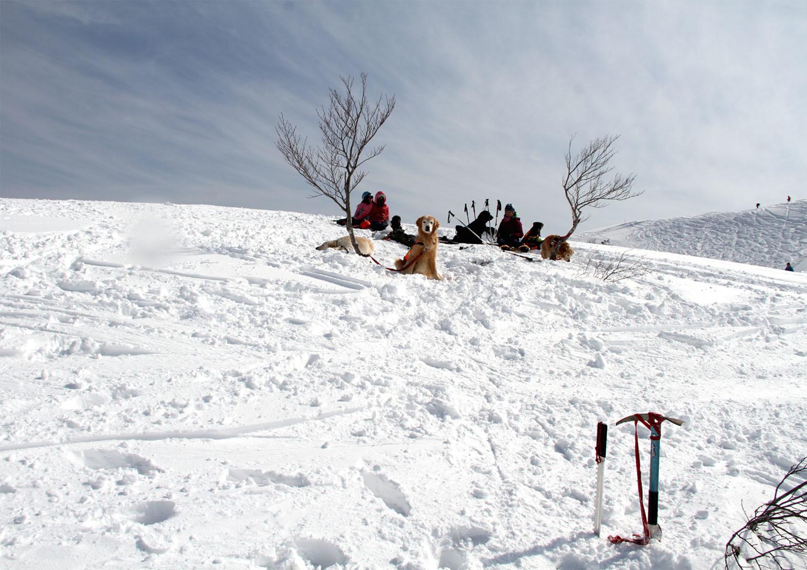 201703 雪中捜索(23)