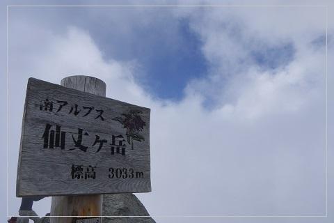 160724senjyo76.jpg