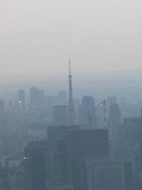スカイツリーから見た東京タワー。