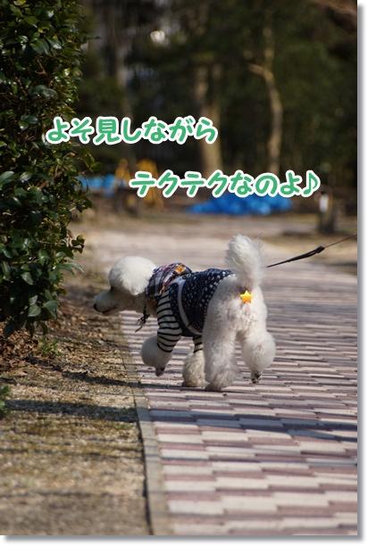森のお散歩2