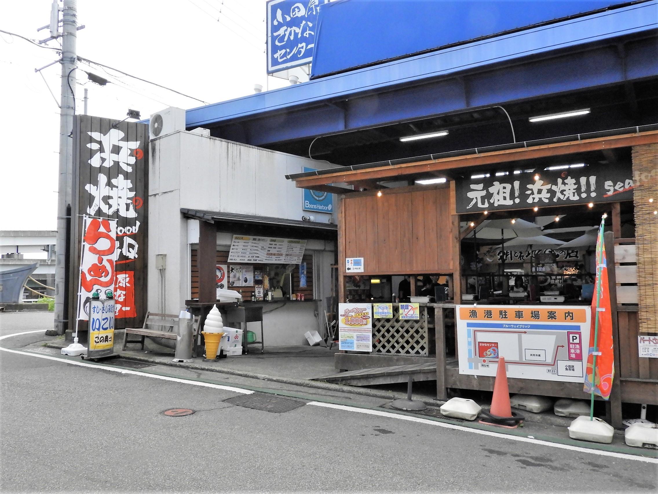 小田原漁港13