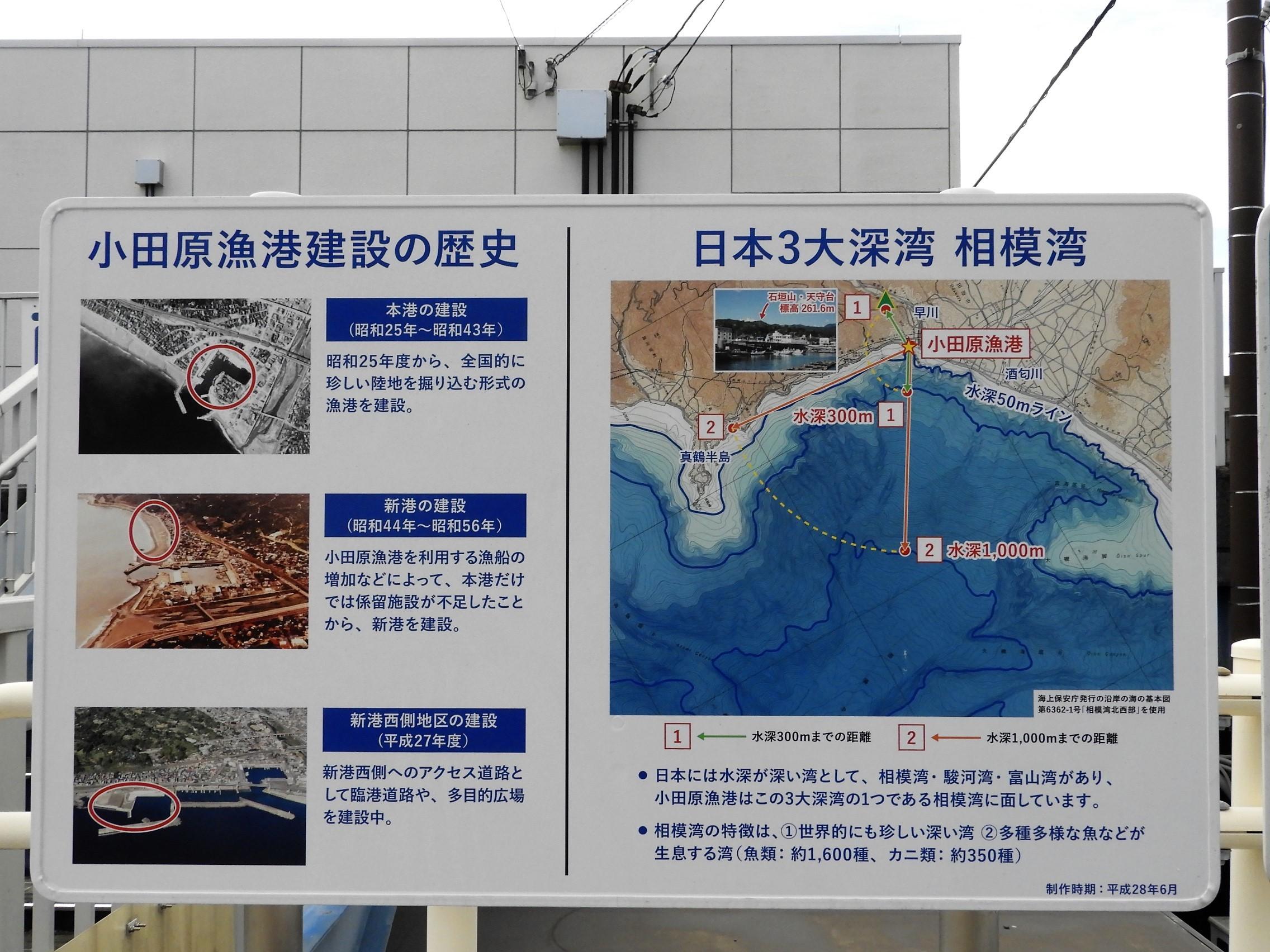 小田原漁港3