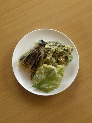 天ぷら、天丼1