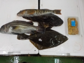 19鮮魚セット2017413
