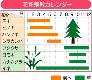花粉飛散カレンダー