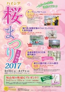 2017sakura_01.jpg