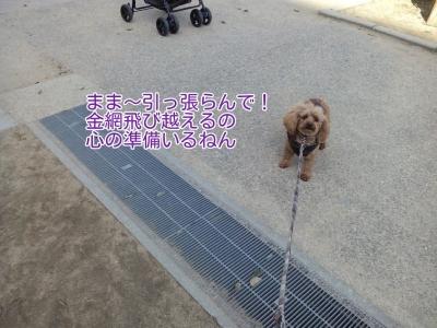 17-02-15-04-21-59-380_deco.jpg