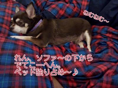 17-02-24-03-05-00-496_deco.jpg