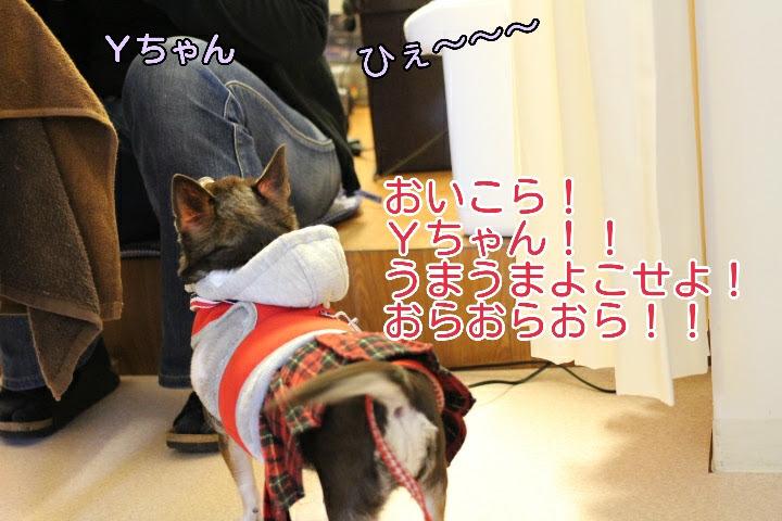 17-04-10-02-00-04-518_deco.jpg