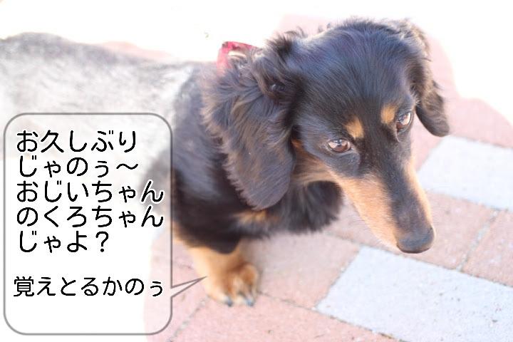 17-04-23-16-38-12-974_deco.jpg