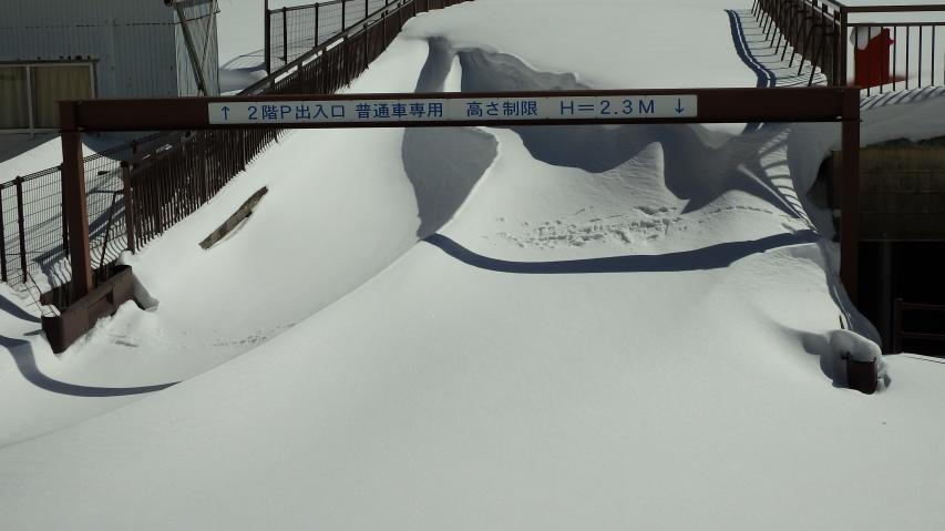雪が多い年はこの高さ制限バーが埋まる