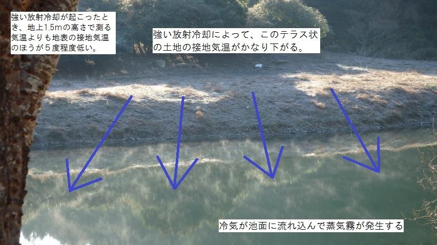 冷気が池面に流れ込んで蒸気霧が発生